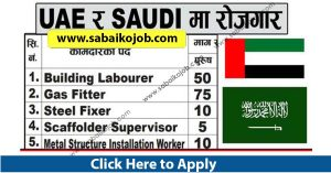 Read more about the article Job Alert ! Vacancy Announcement From Saudi & Uae