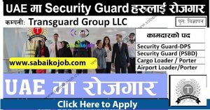 Read more about the article Job Vacancy at Transguard Group LLC