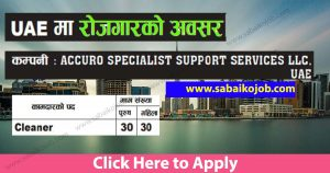 Read more about the article Looking For Career In Foreign Get Job In Uae