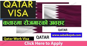 Read more about the article Looking For Career In Foreign Get Job In Qatar, Salary: 81,925/-