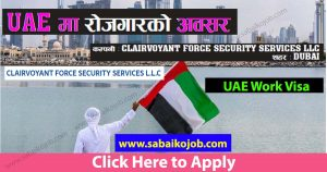Read more about the article Work at CLAIRVOYANT FORCE SECURITY SERVICES LLC DUBAI
