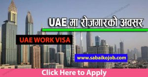 Read more about the article Demand for Foreign Employment in UAE, Different 2 company jobs